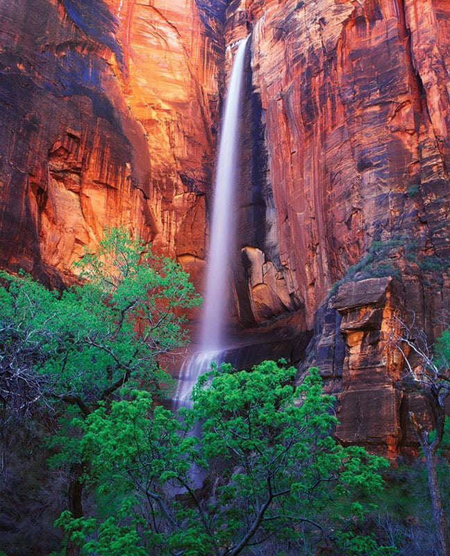 top-national-parks-waterfall-zion