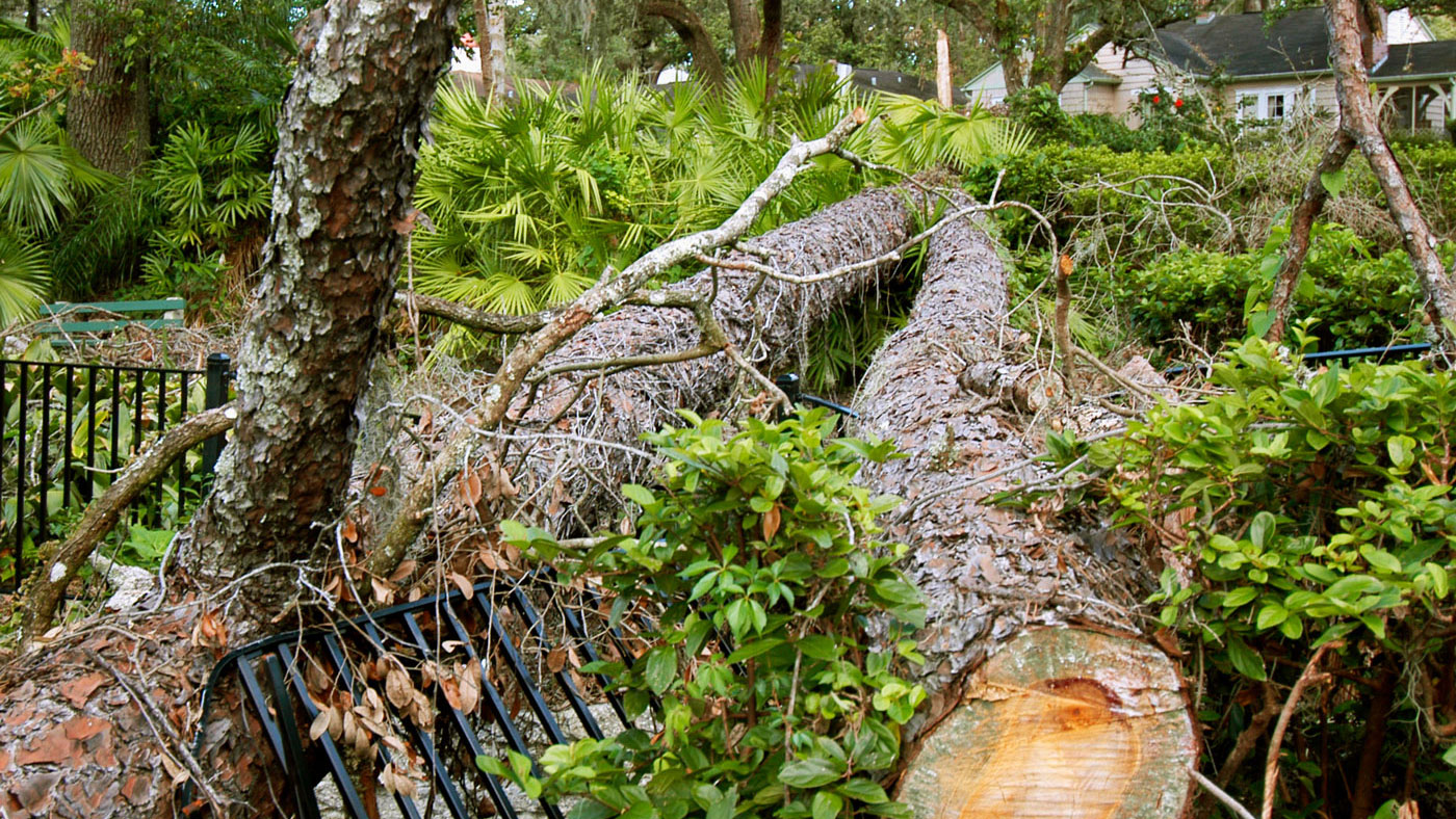 Aaa Insurance Florida >> 9 Tips for the Aftermath of a Major Storm