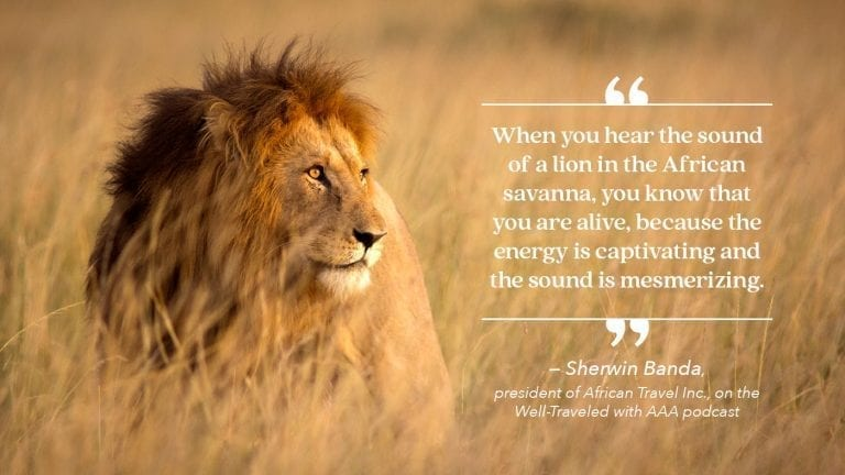 transformational-travel-vacation-ideas-africa-quote
