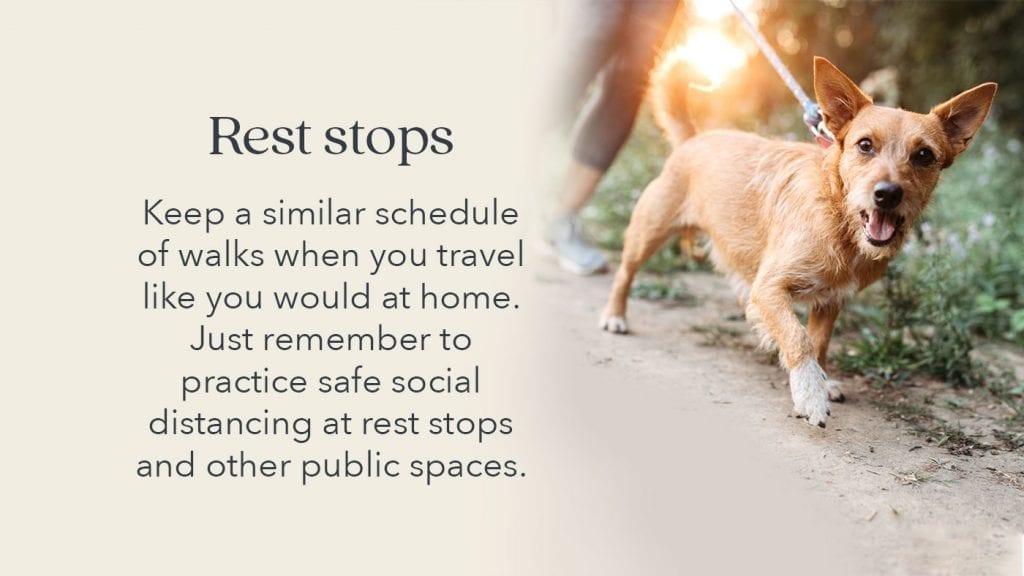 prepare-pets-rest-stops