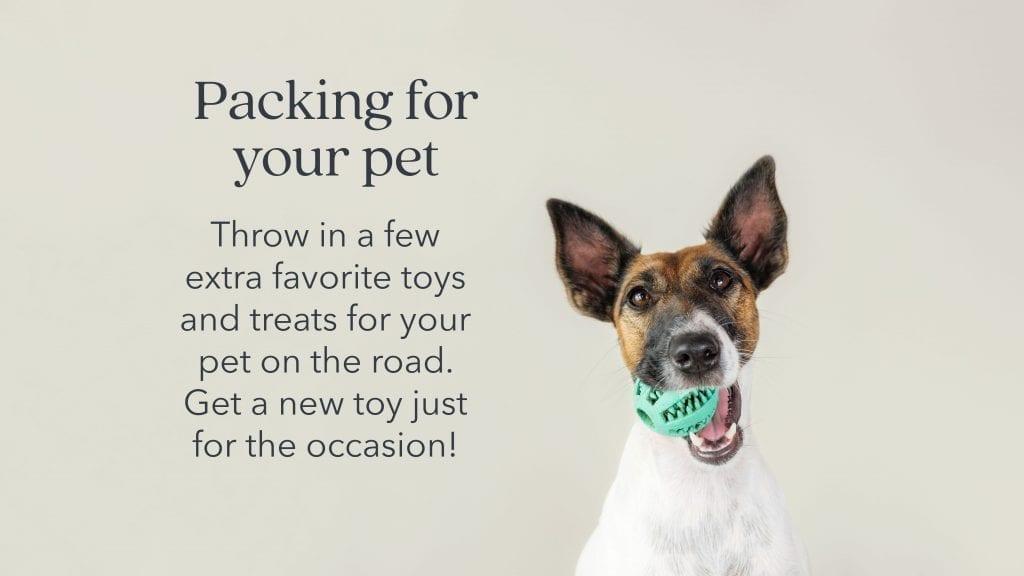 prepare-pets-toys