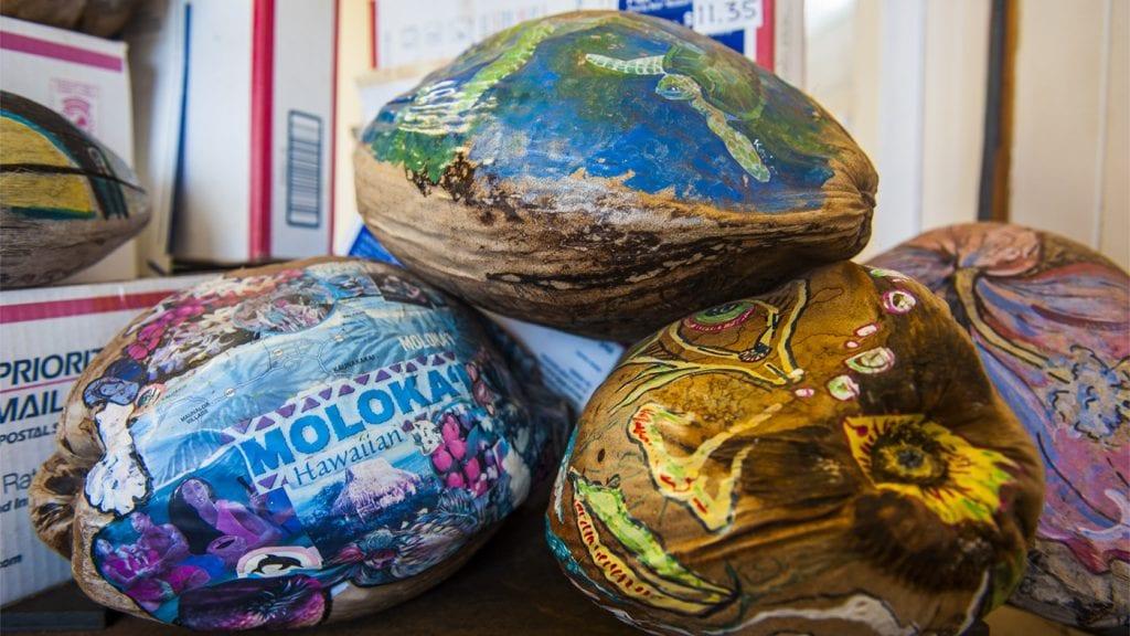 travel-ideas-hawaii-mail-coconut