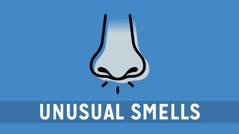 car-problems-warning-signs-smells