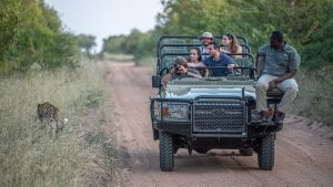 african-safari-tours-tips